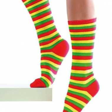 Limburgs gekleurde sokken carnavalskleding den bosch