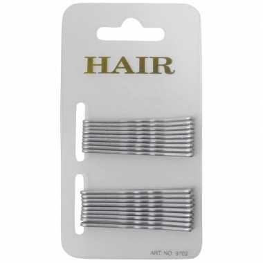 Stuks zilveren pins haarspeldjes carnavalskleding den bosch