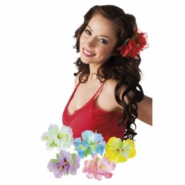 X stuks tropische haarbloemen clip carnavalskleding den bosch