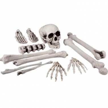Zak skelet botten stuks carnavalskleding den bosch