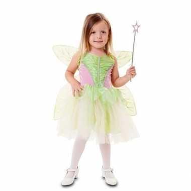 Fee carnavalskleding groen vleugels meisjes den bosch