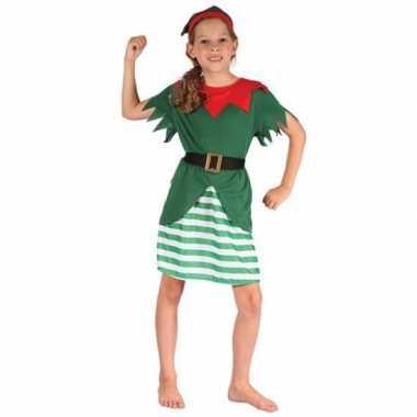 Kerst elf carnavalskledings den bosch