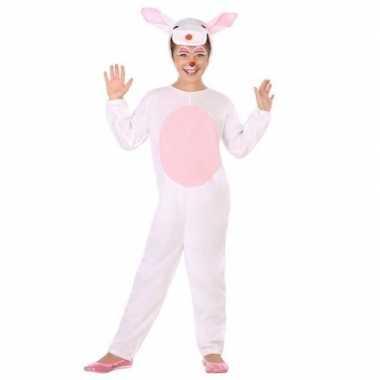 Voor konijn/haas verkleedcarnavalskleding kinderen den bosch