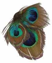 Carnavalskleding decoratiebloem pauwveertjes groen blauw