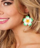 Carnavalskleding groene bloemen oorbel