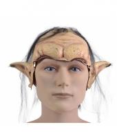 Carnavalskleding half elfen masker