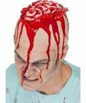Carnavalskleding hersenen pruik hoed