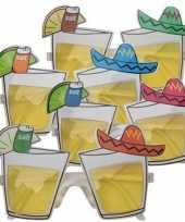 Carnavalskleding mexico feestbril