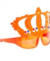 Carnavalskleding oranje feestbril kroon