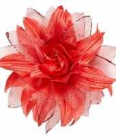 Carnavalskleding rode glitterbloem haar