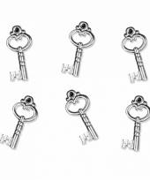 Carnavalskleding sleuteltjes bedeltjes stuks 10082266