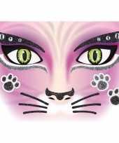 Carnavalskleding thema gezicht folie poezen katten sticker vel