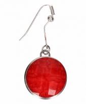 Carnavalskleding zilveren metalen oorbellen rode steen chunk